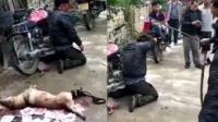 男子乡村里偷狗被抓现行 村民狂甩竹棍抽打