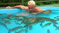 老外将100条食人鱼饿上三天, 然后跳了进去, 食人鱼都被整懵了!