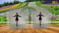 阳光美梅原创广场舞【有一种爱叫做犯贱】动感32步-编舞: 美梅2018最新广场舞视频