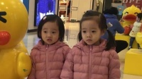 八卦:最好认的双胞胎!杨阳洋妹妹一个像爸一个像妈超可爱