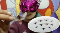 """妹子试吃""""小蜜蜂糯米纸"""" 小小蛰人虫来了 小姐姐边扯边吃好带劲"""