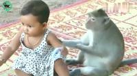 小猴子和宝宝玩的可开心了, 各种模仿和逗挑!