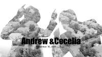 【棒冰兄弟影视】快剪20181118Andrew&Cecelia