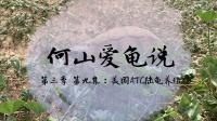 【何山爱龟说】第三季 第九集:美国ATC陆龟养殖场