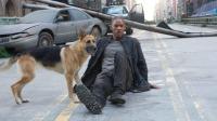 活死人侵占城市, 一人一狗拯救了世界!