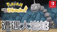 03★精灵宝可梦 Let's Go! 皮卡丘★遭遇大岩蛇