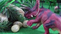 保护恐龙蛋