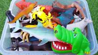 儿童动物园动物玩具 学习动物名称与红水池学习野生动物名称