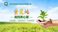 中恒生态农业