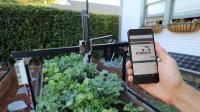 """黑科技""""QQ农场"""", 机器人全自动种植, 网友: 能偷菜吗?"""