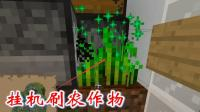 我的世界第二季347: 我利用自动种植机, 在刷铁塔下, 刷农作物