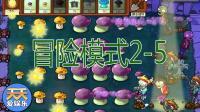 【经典游戏】植物大战僵尸1-004期【冒险模式2-5】椰子解说