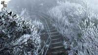 广东迎初雪 游客太兴奋爬山顶唱歌