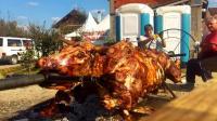 1000斤的烤全牛你见过吗? 烤了整整一天时间, 切肉的瞬间我饿了!