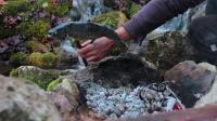 烹饪美食之烤鱼