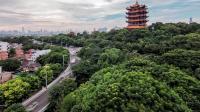 我国确立4大内陆中心城市, 苏杭无缘上榜, 里面有你的家乡吗?