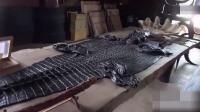 情侣在泰国的黑庙见到真的鳄鱼皮,女子忍不住想摸一下真皮!