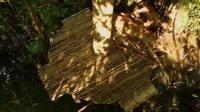 荒野生存之建造木房