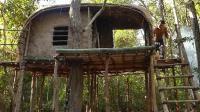 荒野生存  原始技能 建造竹屋
