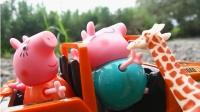 小猪佩奇一家人乘坐吉普车去野生动物园游玩 学习动物名称