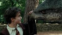 男孩收服一只千年飞鹰兽, 救了自己一命, 还打败了狼人之王