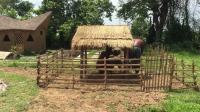 原始生活: 建造迷你野猪屋