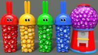 学习颜色与兔子模具和口香糖机器动物手指家庭歌曲