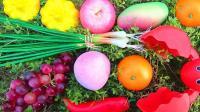 认识南瓜等7种水果蔬菜