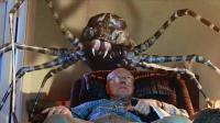 巨型蜘蛛无限繁殖, 它们入侵城市啃食人类简直头皮发麻, 6分钟看《八脚怪》