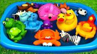小鸭子和他的动物玩具朋友们