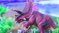 认识新的恐龙玩具