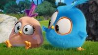 愤怒的小鸟:小蓝鸟要开始跑酷了,结果被另外两只小蓝鸟嘲笑了!
