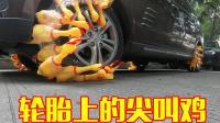 四个轮胎上全绑上尖叫鸡开动会怎样? 感觉车都在惨叫了