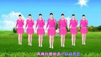 河北青青广场舞《男人有钱就变坏》幽默风趣, 动感十足, 32步好听好看