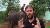 男子在印度体验近距离接触大象,这些大家伙们,实在太聪明了