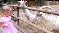 萌娃小可爱去到了一个有趣的儿童乐园, 真是好玩呢! —萌娃: 山羊萌萌哒!