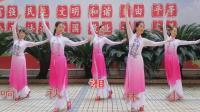 湘女广场舞《琵琶引》演绎: 湘女舞蹈队 编舞: 娇娇