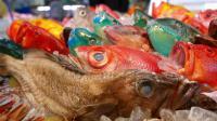 日本街头小吃-黄金现货濑鱼生鱼片