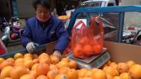 老婆肚子饿了, 大早上就陪她去县城吃东西, 这橙子又甜又便宜!