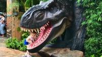 小萝莉来到了侏罗纪恐龙乐园和儿童游乐园,好好玩啊。