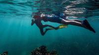 26岁女生疑印尼浮潜失踪 3D释疑浮潜暗藏哪些危险?