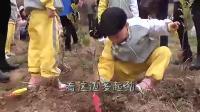 中国宝宝树: 英山县直幼儿园植树节活动