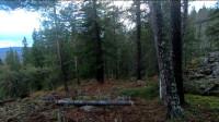 露营 旅行 荒野生存 体验 之 丛林中用石头和木头搭建小屋