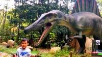 萌娃游玩恐龙乐园 有仿真霸王龙 三角龙 剑龙 棘龙 暴龙 腕龙 听恐龙声音
