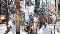 荒野生存体验之森林中建造木房