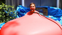 国外小哥花式挑战, 把自己装进巨大的气球里, 这画面怪异又搞笑!