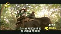 男子架好摄像机,和追踪专家骑着大象寻找老虎,以便了解它们行为