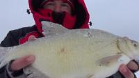 钓鱼大丰收之冬季冰钓