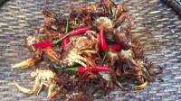 荒野生存 烹饪美食 之森林里烹饪炸蟹