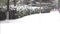 贵阳2018年的第一场雪-雪景实拍-2018年的第一场雪